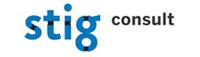StigConsult logo